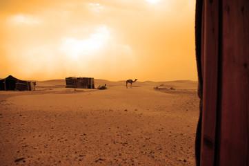 Desierto marroqui