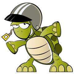 schildkröte rennfahrer cartoon lustig
