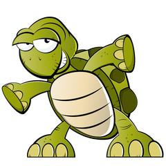 schildkröte cartoon lustig
