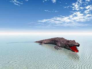 Crocodile at the Beach