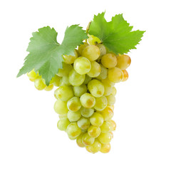Bunch of white grapes with green leaves.