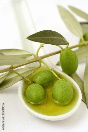 Найти изображение: Категория: Еда Специи, Травы и Приправы Оливковое масло