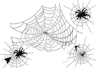 four spider webs