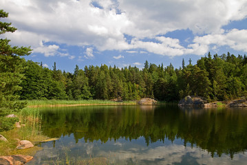 Idyllic lake in summer.