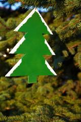 Holzbaum an Tannenbaum