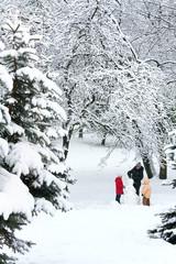 Family in winter park