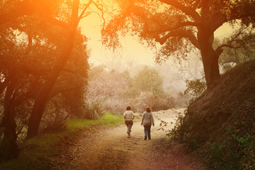 Two women walking under trees in scenic park at sunset.