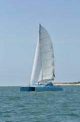catamaran bleu