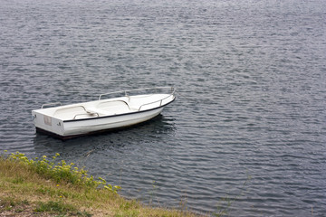 White rowboat anchored near meadow