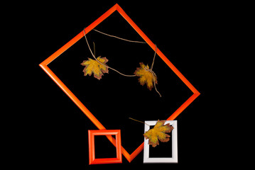 Photo frames with autumn maple leaves on rope over black