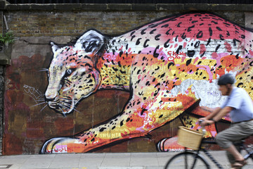 Leopard and cyclist