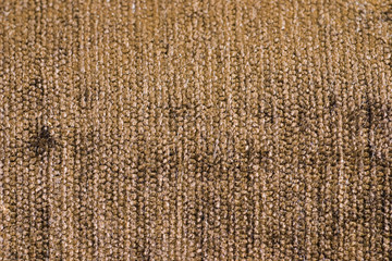 texture of carpet of brown color with a shallow nap