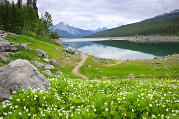 Mountain lake in Jasper National Park, Canada