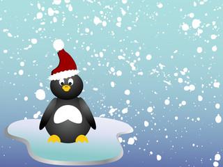 Pinguin auf einer Eisscholle