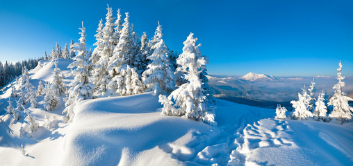winter mountain panorama landscape
