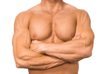 Brustmuskeln