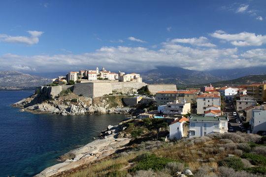 calvi,yacht,port,citadelle,corse,corsica,balagne