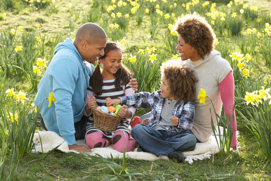 Family Relaxing In Field Of Spring Daffodils