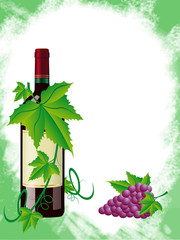 red wine and grapes is in a green frame vector illustration