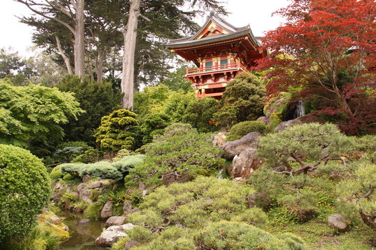 Japanese Tea Garden in San Francisco