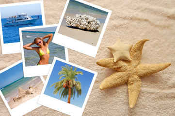 Two starfishes and photos on a beach towel
