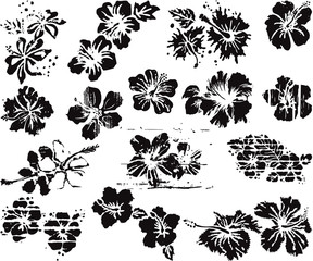 Grunge hibiscus flowers collection