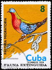 CUBA - CIRCA 1974 Passenger Pigeon