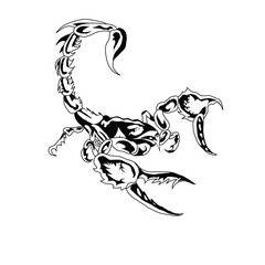 It is black a white scorpion.Vector illustration