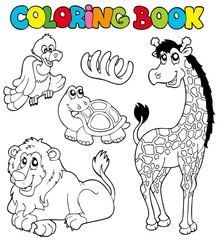 Coloring book with tropic animals 2