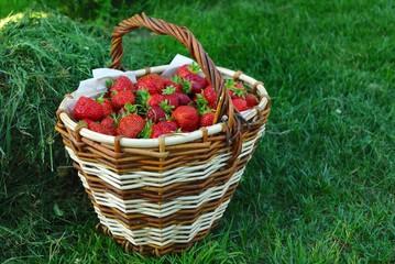 Basket full of red strawberry