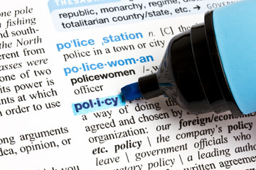 """ Policy"" highlighted in a dictionary"
