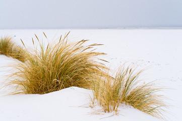 Weihnachten an der Nordsee, Winterlandschaft