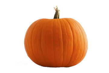 Large Pumpkin isolated on white
