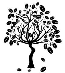 Coffee tree, vector