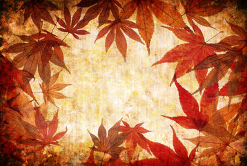 abstract grunge autumn background with leaves