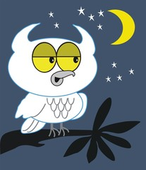 Night owl cartoon