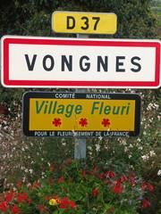 village dans l'ain : Vongnes