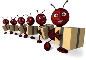 Fourmis et cartons