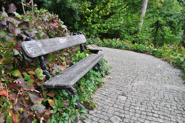 bench for rest in a park