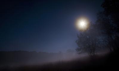ночной лунный пейзаж