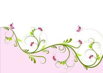 ranke grün/pink