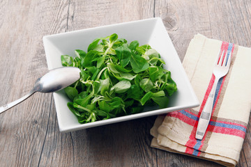 Cerca immagini soncino for Soncino insalata