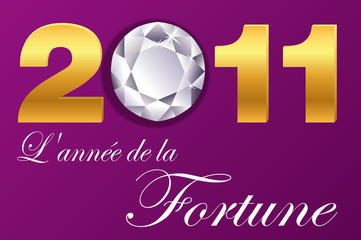 2011_Annee_Fortune