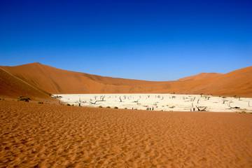 Dead vlei in namib desert,Namibia,dead trees (sossusvlei)