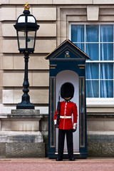 buckingham palace solider