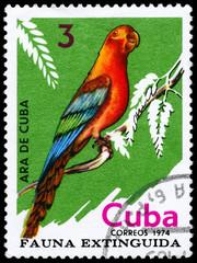 CUBA - CIRCA 1974 Macaw