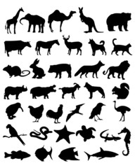 36 animal black silhouettes