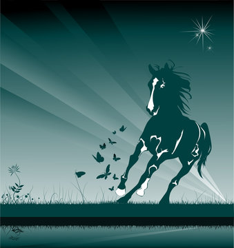 horse in the night box