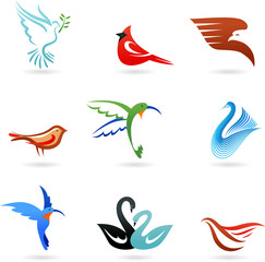 Different colorful birds