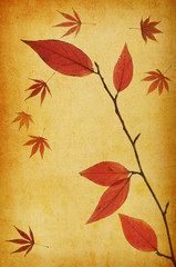 abstract grunge autumn background